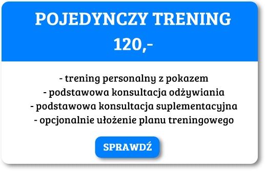 Cena pojedynczego treningu personalnego w Poznaniu